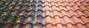 Pulizia del tetto