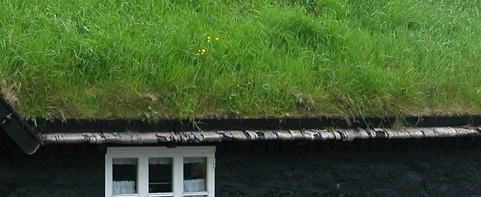 Il tetto verde, un'ottima idea!