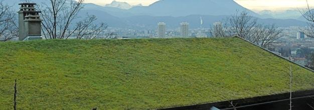 Quanto costa un tetto verde