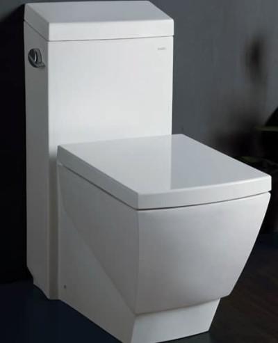 Water bianco in stile moderno su bagno ecologico