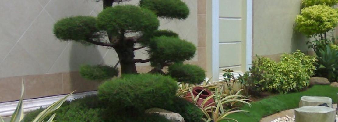 Creare un giardino blog edilnet - Quanto costa un architetto per ristrutturare casa ...