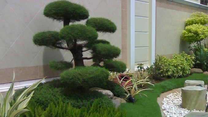 Creare un giardino sul terrazzo blog edilnet for Giardino zen piante