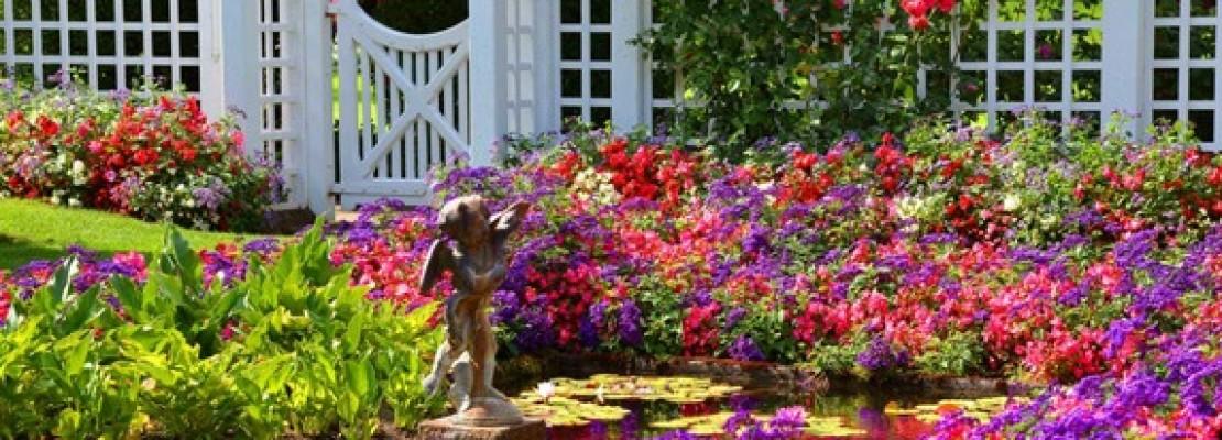 Creare un giardino mediterraneo blog edilnet - Giardini mediterranei ...