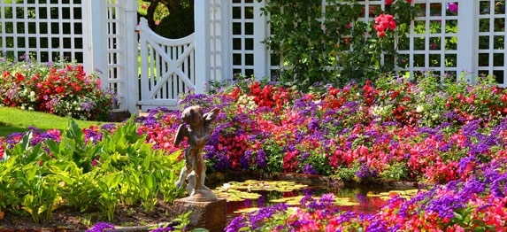 Creare un giardino mediterraneo
