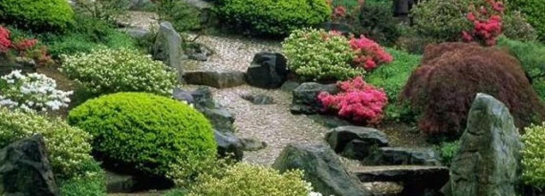 Come trasformare un terreno in giardino blog edilnet - Terra da giardino ...
