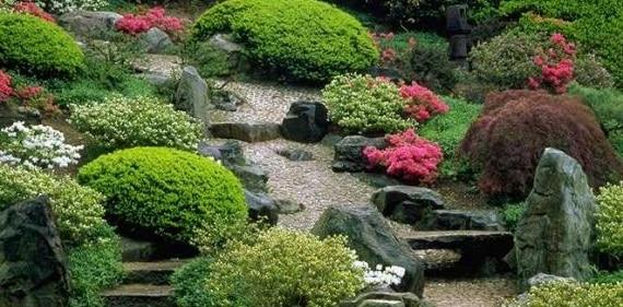 Come trasformare un terreno in giardino