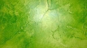 Velatura bicolore