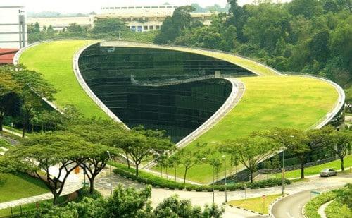 Spettacolare edificio realizzato con tetto verde