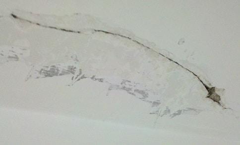 crepe su muro cantina da ristrutturare