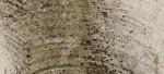 Come prevenire la muffa sui muri