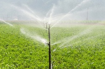mondo irrigazione