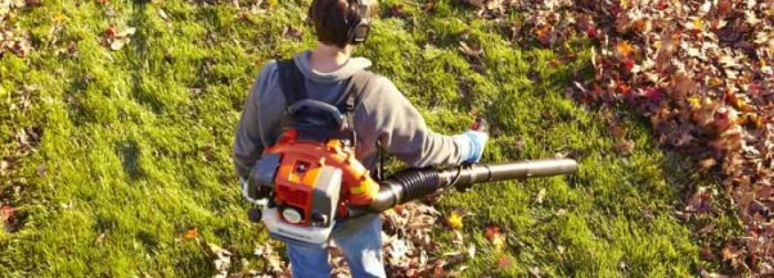 Un soffiatore per foglie è uno strumento indispensabile per la cura del giardino.