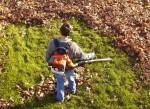 Soffiatore foglie: guida all'acquisto