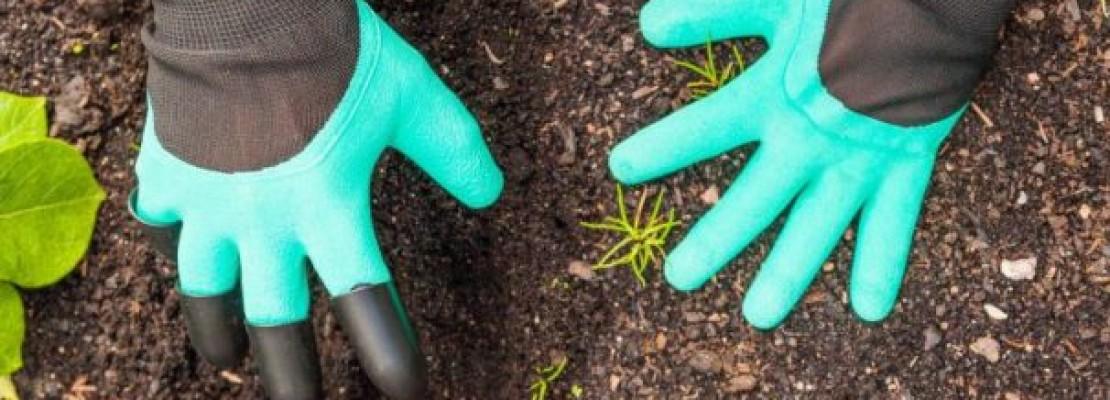 Dei guanti da giardinaggio con artigli.
