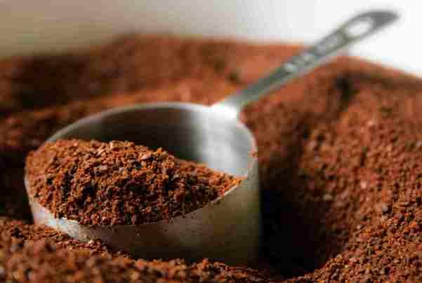 Sembra che il caffè sia utile contro le formiche.