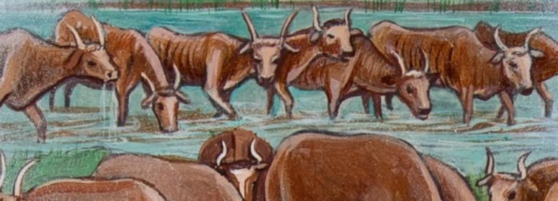 Vacche magre dalla narrazione