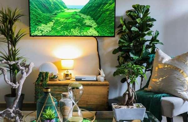 riducendo i consumi si può rendere la propria casa ecologica.