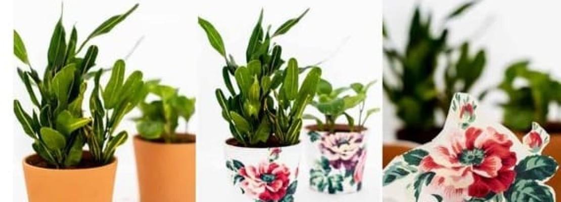 Splendidi vasi di fiori decorati con la tecnica del découpage