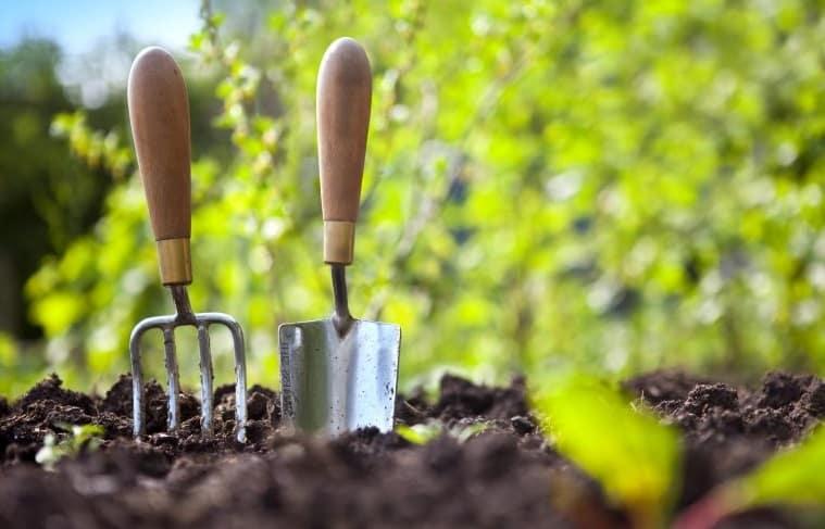 Due attrezzi per il giardinaggio