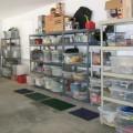Garage organizzato con oggetti su scaffali