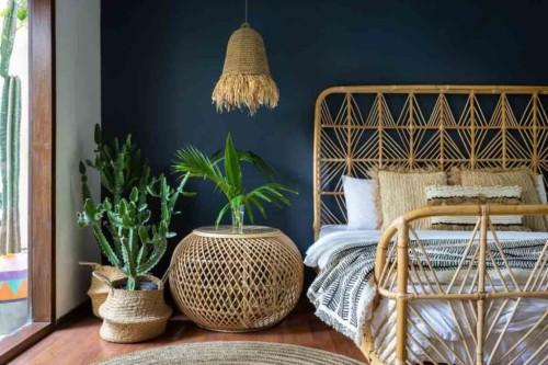 Delle piante esotiche in una camera con arredamento in stile etnico